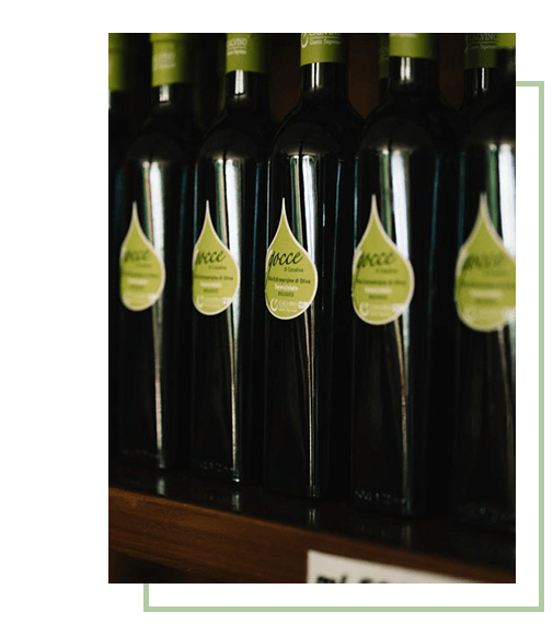 Organic Olive Oil 1